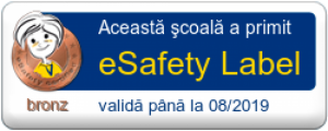 cropped-e-Safety-label-1.png